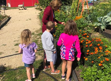 Garden Prayer Activities