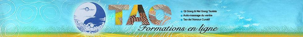 FORMATIONS EN LIGNE.jpg