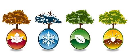 cycle des saisons de la nature.png