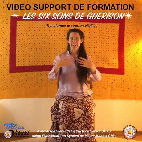 VIDEO LES SIX SONS DE GUERISON : Transformer le stress en Vitalité ! (AD-25%)