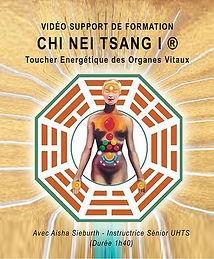 VIDEO SUPPORT DE FORMATION CHI NEI TSANG