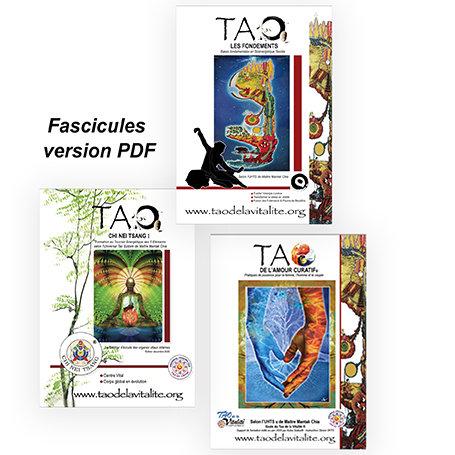 FASCICULE VERSION PDF : 15€ PIÈCE (LOT DE 3 40€)