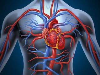Exercices du Coeur