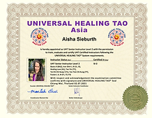 Aisha Sieburth SI2.png