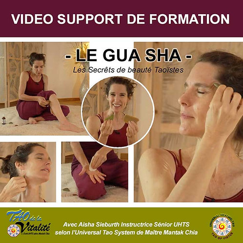 VIDEO LE MASSAGE GUA SHA : SECRÊTS DE BEAUTE TAOÏSTES (AD -25%)