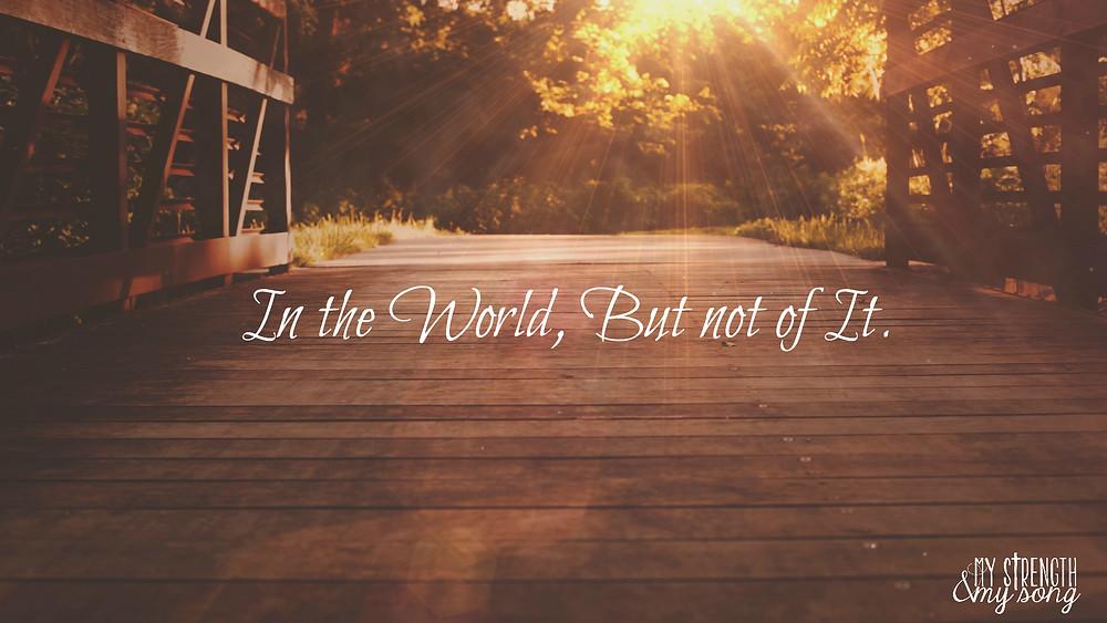 In the World.jpg