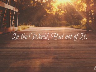 """7 Answers to the Question: """"How do I remain in the world, but not of it?"""""""