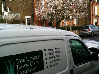 Best Practise Spring Lawn Care