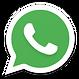 Whatsapp_192px_1186684_easyicon.net.png