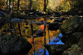 Brook Fall Reflection