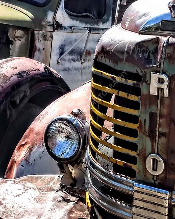 Car Grill Graveyard