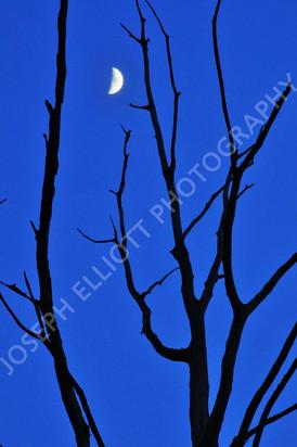 Night_Photography9.jpg