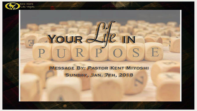 YOUR LIFE IN PURPOSE