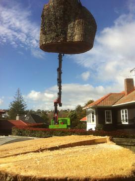Hiab crane dismantle oak tree
