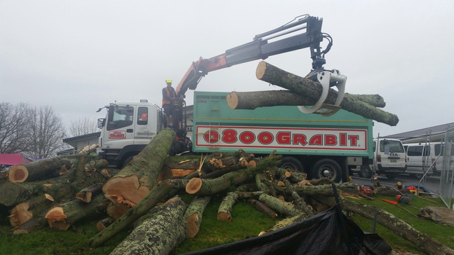 Trucking wood to the yard