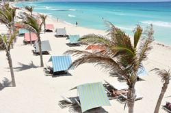 Oleo Cancun Playa 8