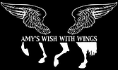 Amy's Wish With Wings Logo on black.png