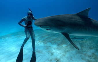 Forrest Galante with shark.jpg
