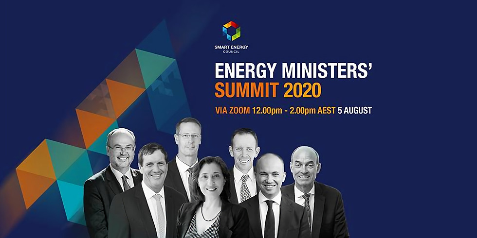 Energy Ministers' Summit Online Event
