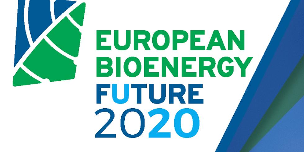 European Bioenergy Future 2020