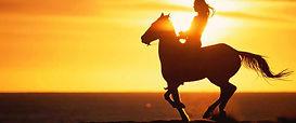 oahu-horseback.jpg