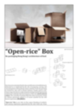 OPEN RICE BOX VB2010_01.jpg