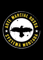 SystemaMoncada_cor circulo.jpg