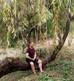 Seminário Root Motion