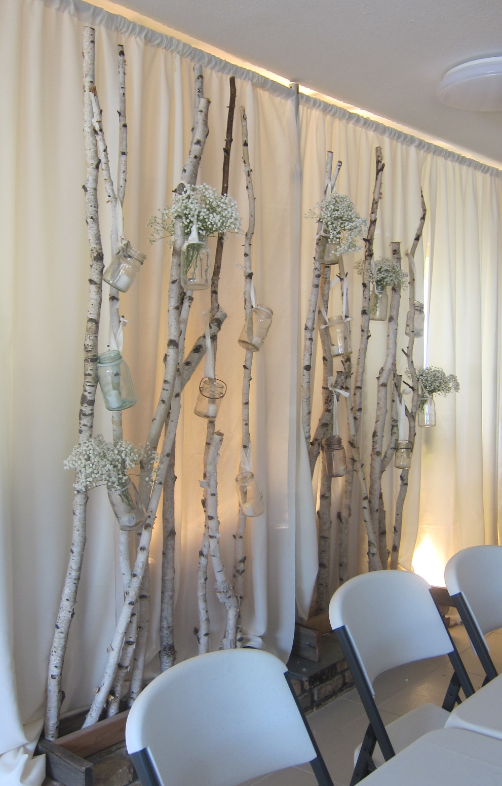 birch tree backdrop rental