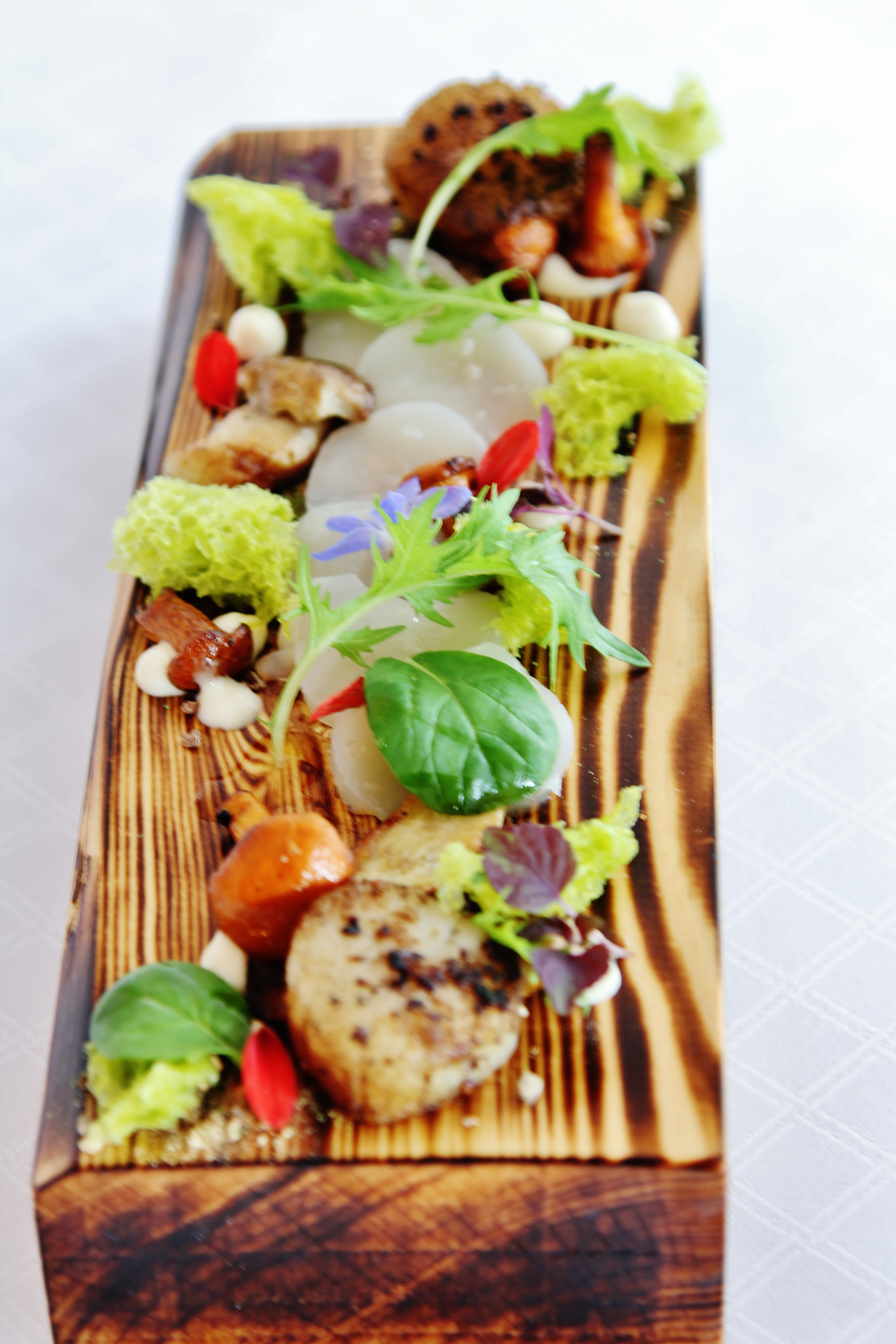 Bellevue Rheinhotel_Gourmetrestaurant_Jakobsmuschel und Pilze