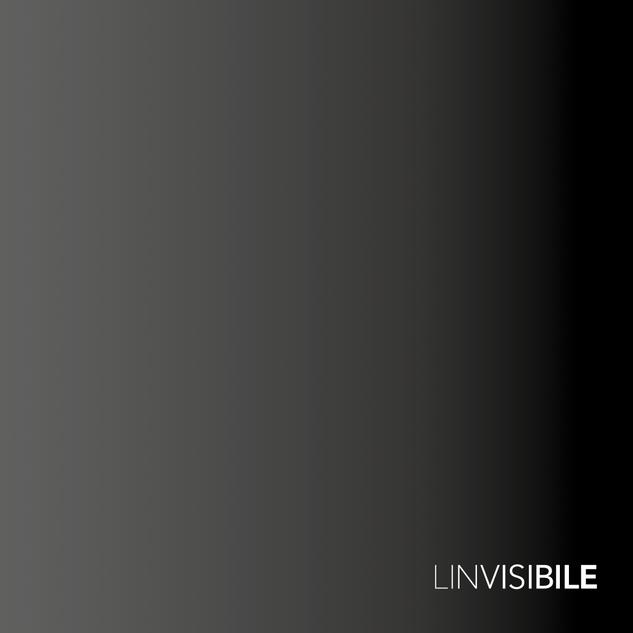 Catálogo Linvisibile