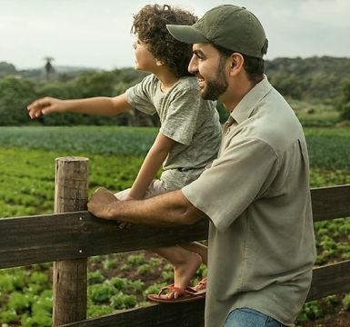 a-importancia-do-seguro-agricola-na-lavo