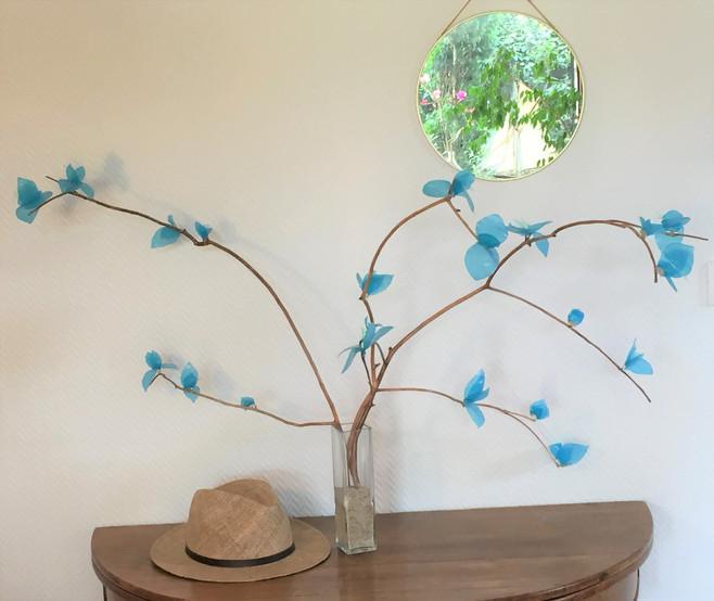 Alpina bleu