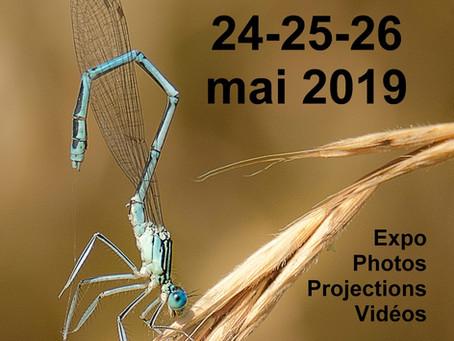 1er Festival Images Auxois Morvan