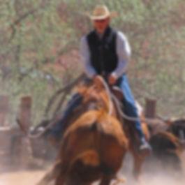 Don-Weller-cutting-horse.jpg