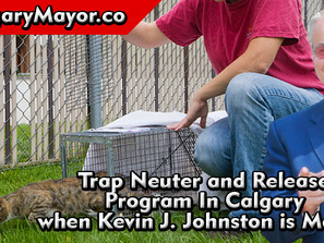 Trap Neuter and Release Program In Calgary - Kevin J Johnston