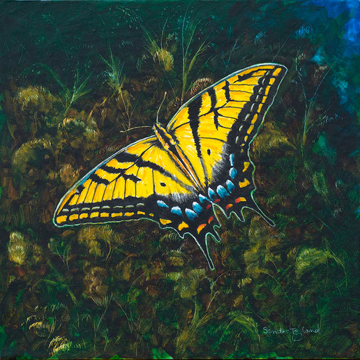Swalllowtail Butterfly