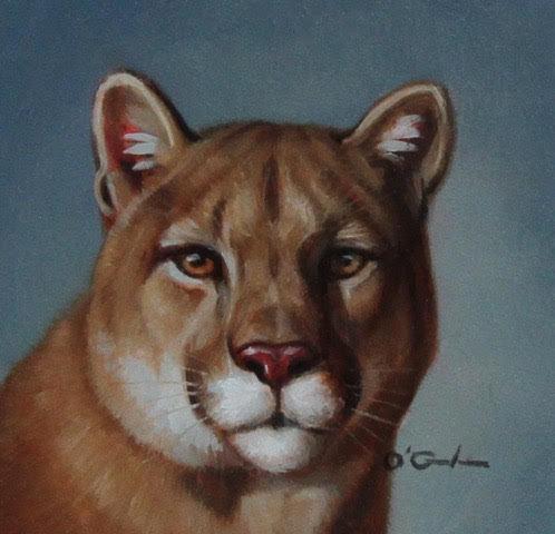 Mini Mountain Lion by Jennifer O'Cualain