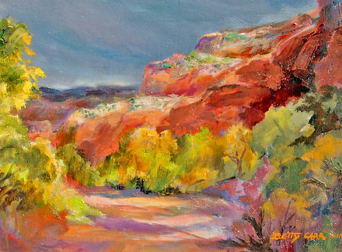 Canyon's Glow by Betty Carr
