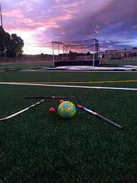 goalpic1.jpg