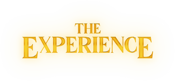 THE EXPERIENCE LOGO.png