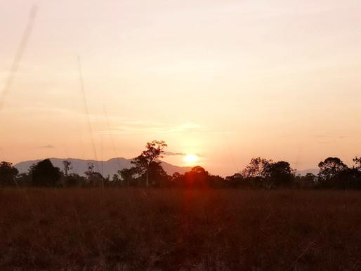 ชวนนักท่องเที่ยวชมแสงตะวันโผล่ผ่านทุ่งหญ้าสะวันนาเกาะพระทอง -แอฟริกาไทยแลนด์