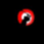 logo pix trans white.png