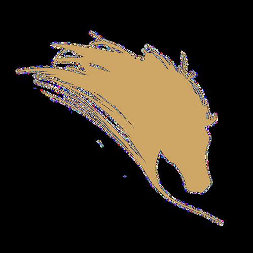 Caballo - Logo sin punta.png