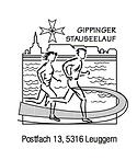 Logo Stauseelauf.png