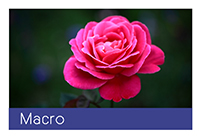 macro-01