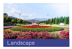 landscape-01
