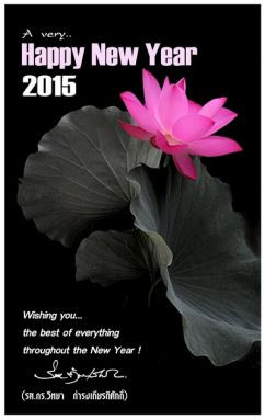 2015-01-242x383.jpg