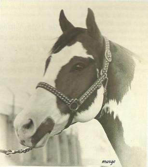 LENDAS PAINT HORSE: ADIOS AMIGOS