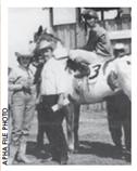 LENDAS PAINT HORSE: CRYSTAL EYE